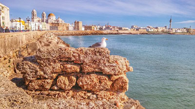 Excursions, trips, visits, attractions, tours and things to do in Cadiz Andalucia Spain